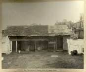 Shed at rear of Caraher Place, off George Street, Sydney, c.Jul 1900. Digital Id 12487_a021_a021000012
