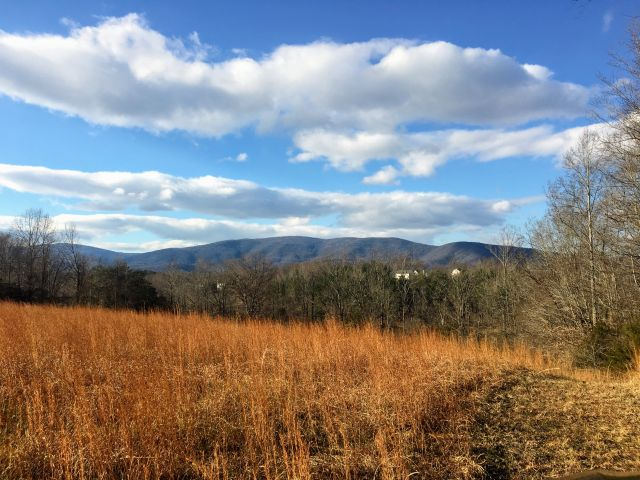 Some awesome lots I'm marketing in Crozet