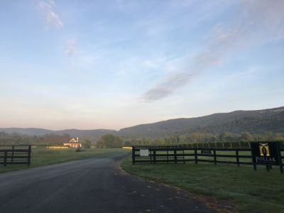 Morning meditation in Crozet