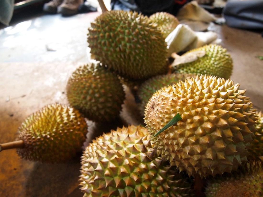 Maui durians