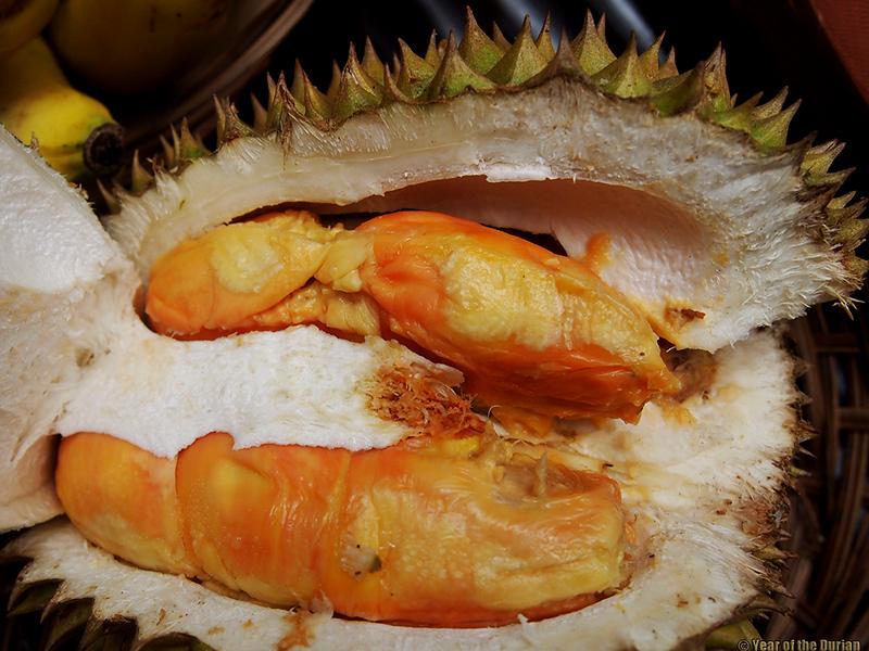 Banyuwangi Durian