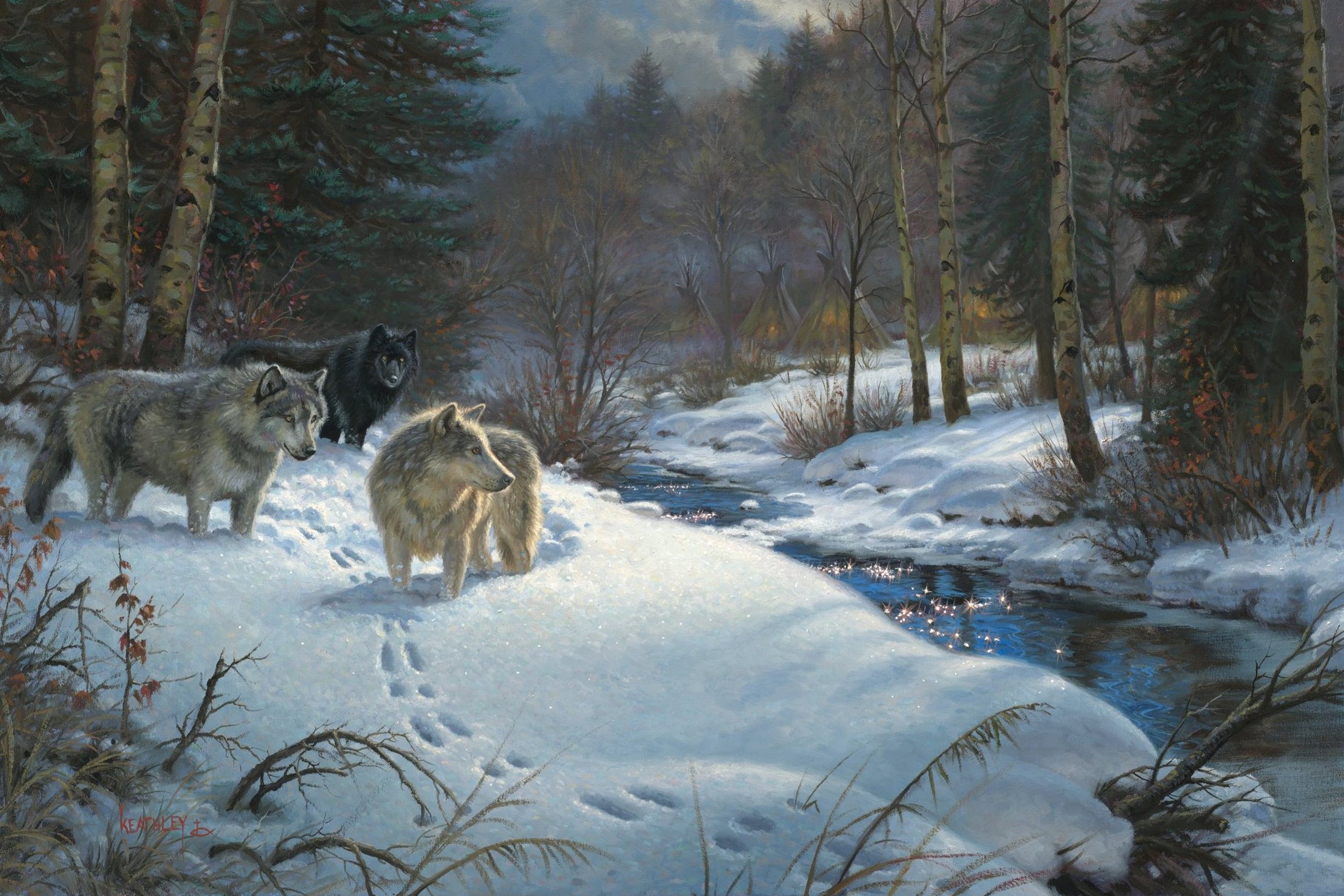 Wolf In Winter Beautiful Landscape Background