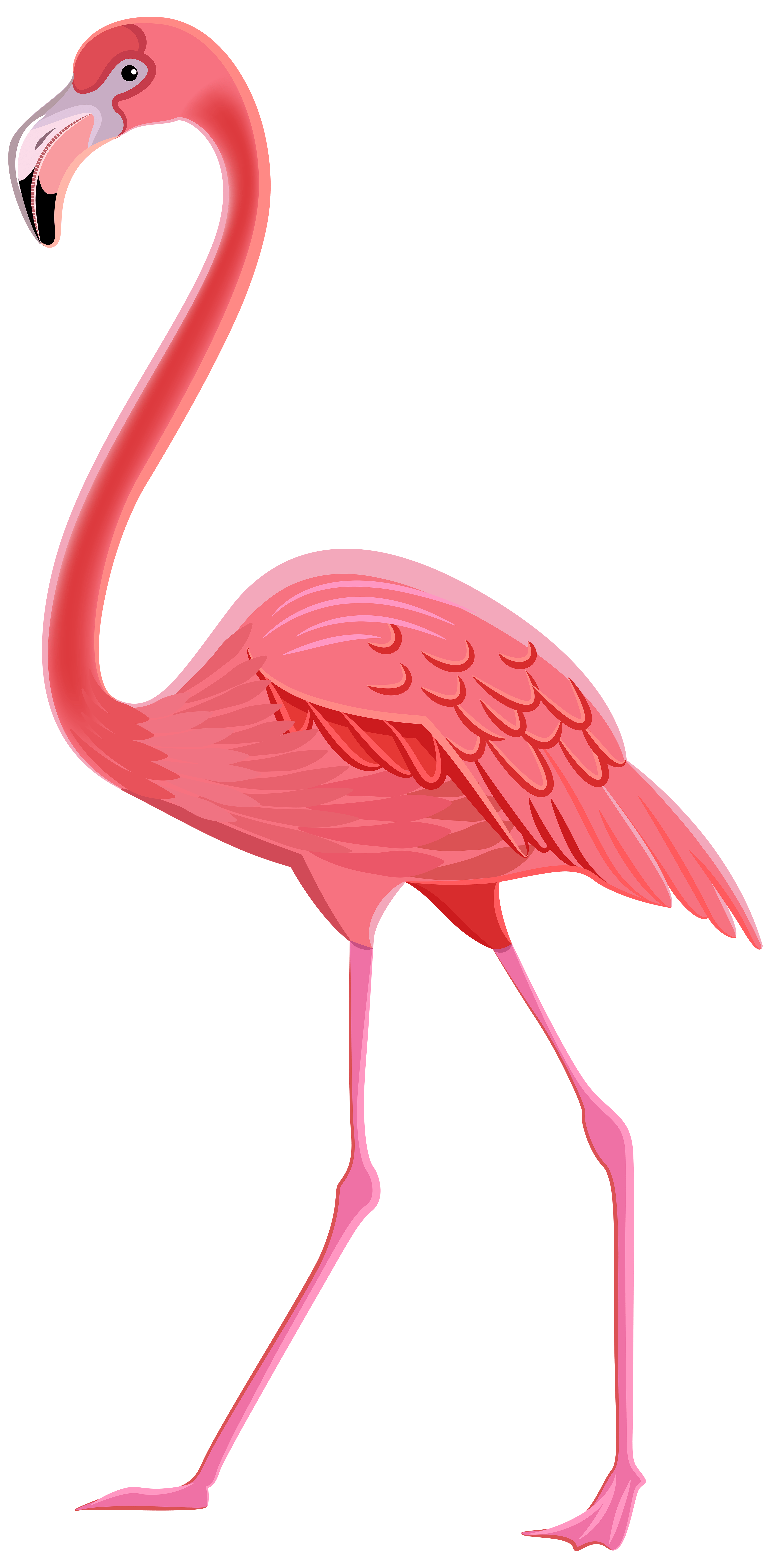 hight resolution of flamingo png transparent clip art image