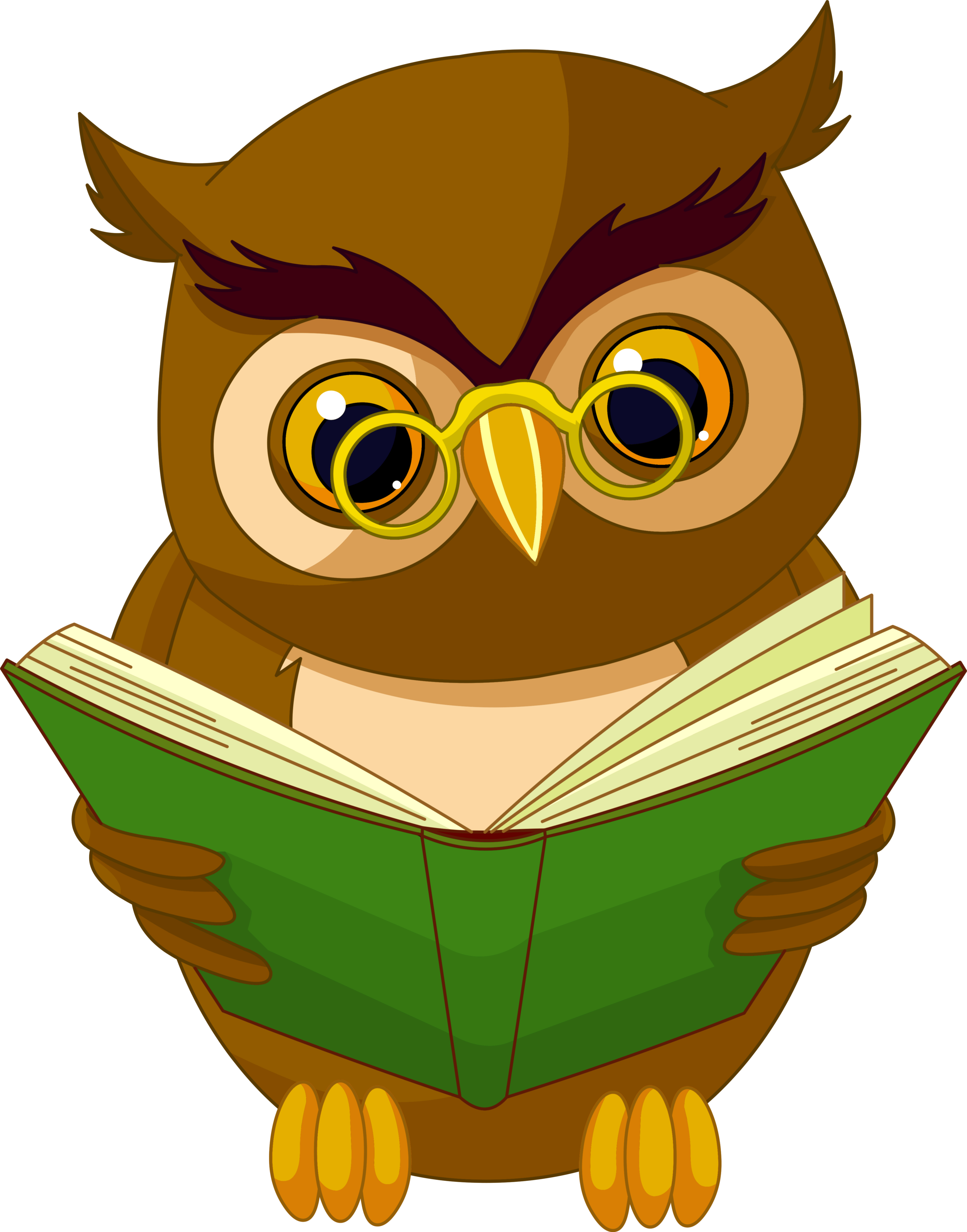transparent owl with book png clipart picture [ 3923 x 4999 Pixel ]