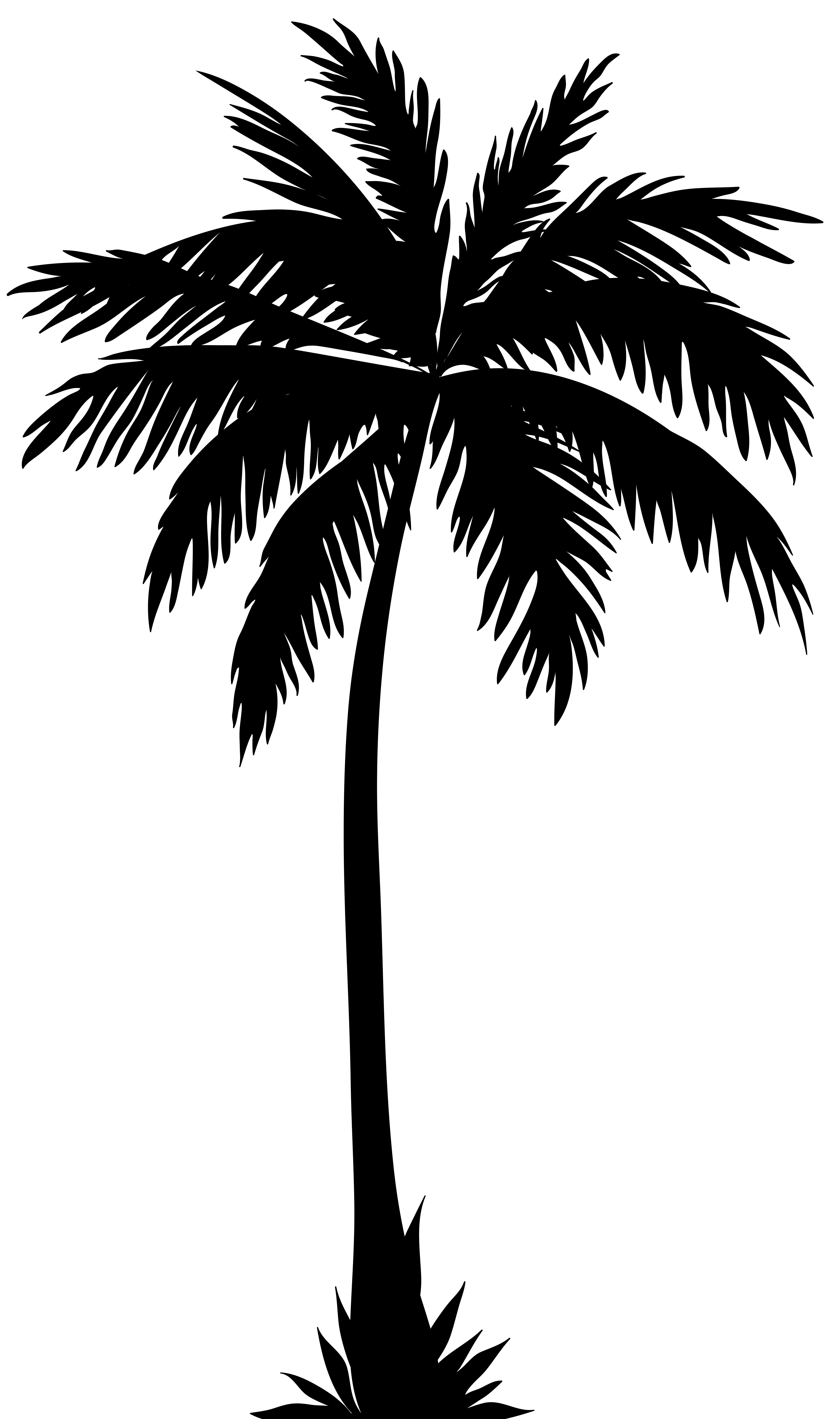 medium resolution of palm tree silhouette png clip art image