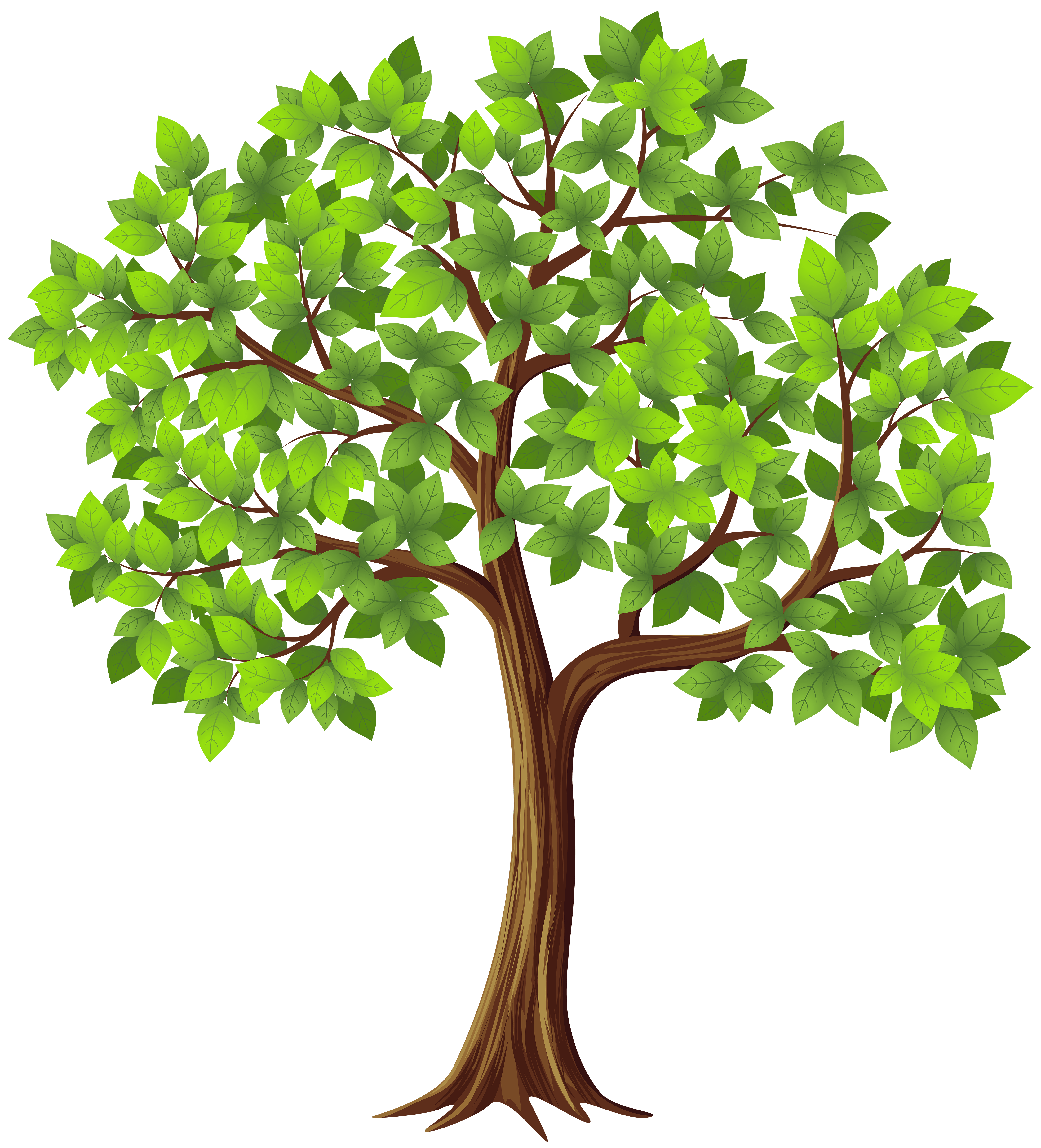 hight resolution of tree png transparent clip art image gallery yopriceville high rh gallery yopriceville com tree clip art free tree clip art from above