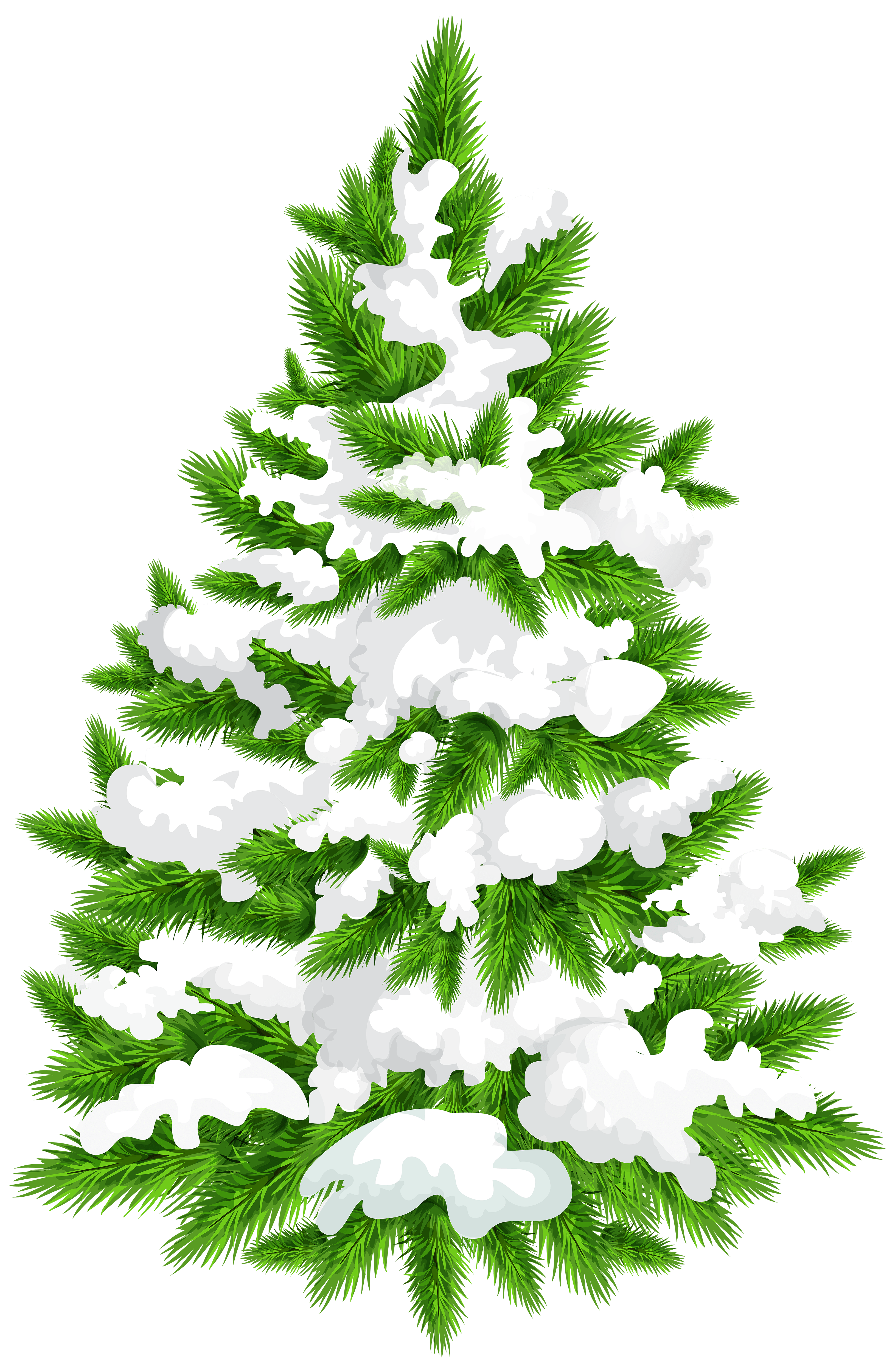 hight resolution of snowy pine tree png clip art image
