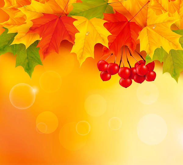 Free Snoopy Fall Wallpaper Orange Fall Leaves Background Gallery Yopriceville