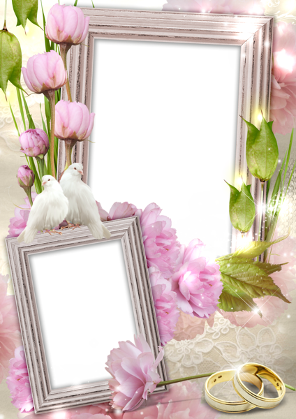 Transparent Wedding Frame with Rings and Doves  Gallery