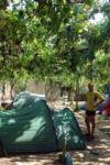 Camping in Verona