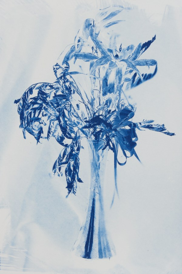 """""""How Love Ends"""" © Richard Kynast. """"Love ends in dead flowers."""" Approx 24x35cm / 9.4x13.8"""" on Bergger COT320. Handcrafted alternative process photograph (original traditional formula cyanotype from a digital negative). Print is signed and numbered #3, offered by GALLERY5X7 at $500."""