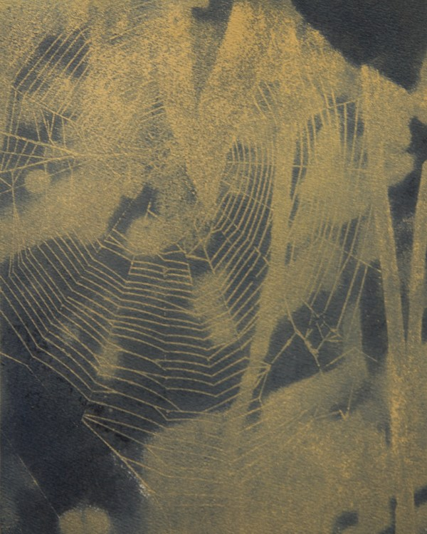 """""""Web in Yellow"""" © Colin D. Irwin. Approx. 10x8"""" (25.40x20.32 cm) handcrafted polychrome gum oil print on Stonehenge paper. Signed, single edition print, offered at $250."""