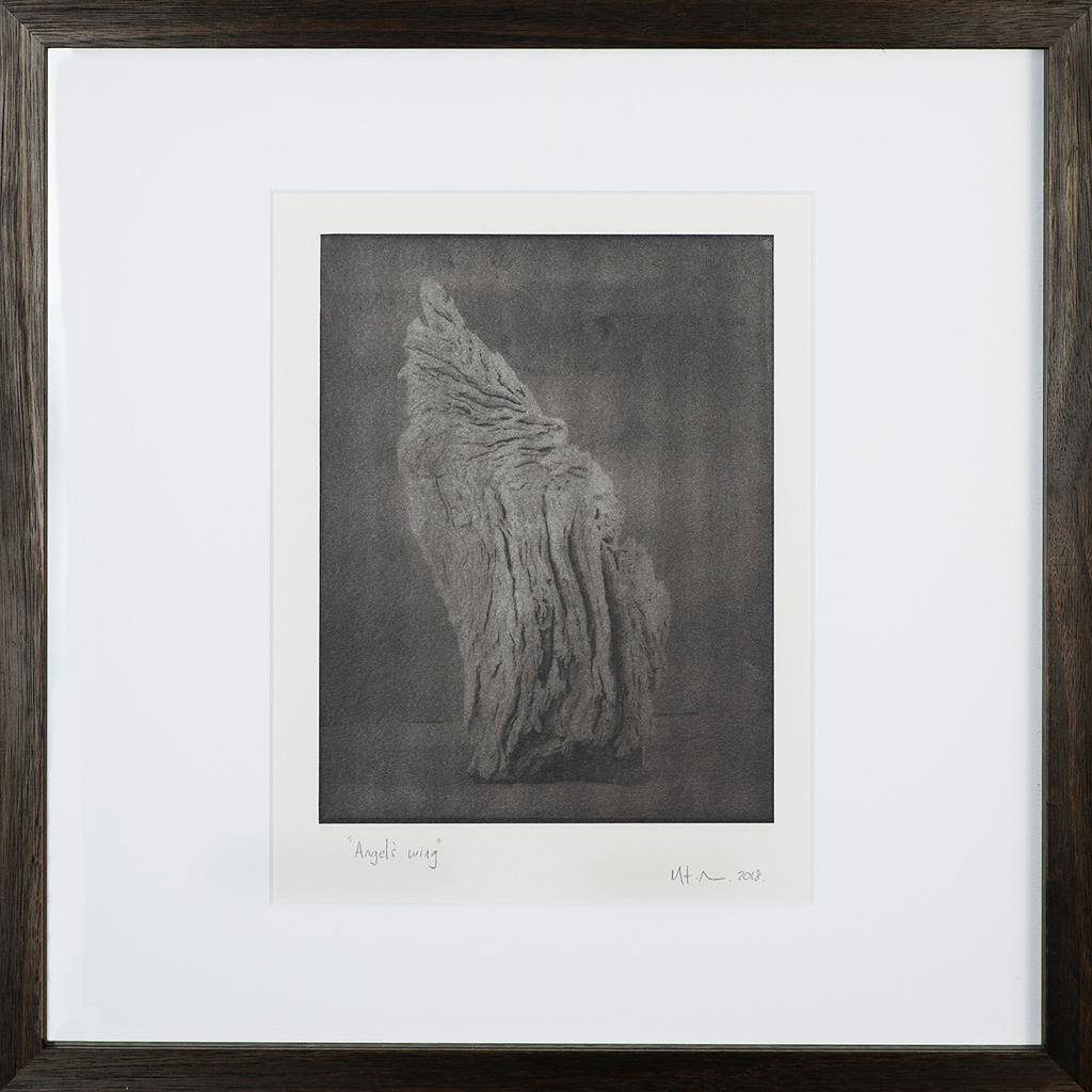 """""""Angels Wing 2"""" © Mat Hughes. Approx. 7x9.5"""" (18x24cm) handcrafted warm-toned silver gelatin tree bark still-life study from scanned large format 4x5 negative. Printed on fibre paper and bonded on 16x16"""" (40.5x40.5cm) Forex foamboard ready for framing. Edition of 3 unique signed prints. Offered by GALLERY5X7 at $250."""