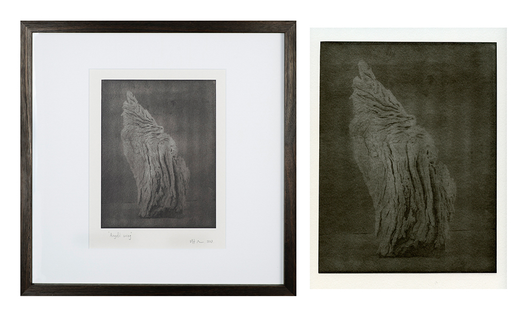 """""""Angels Wing 3"""" © Mat Hughes. Approx. 7x9.5"""" (18x24cm) handcrafted warm-toned silver gelatin tree bark still-life study from scanned large format 4x5 negative. Printed on fibre paper and bonded on 16x16"""" (40.5x40.5cm) Forex foamboard ready for framing. Edition of 3 unique signed prints. Offered by GALLERY5X7 at $250."""