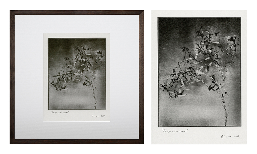 """""""Branch With Seeds 3"""" © Mat Hughes. Found, Little Desert National Park, Victoria. Approx. 6.5x8.5"""" (16.5x21.5cm) handcrafted silver gelatin tree bark still-life study from scanned large format 4x5 negative. Printed on fibre paper and bonded on 16x16"""" (40.5x40.5cm) Forex foamboard ready for framing. Edition of 3 unique signed prints. Offered by GALLERY5X7 at $250."""