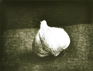"""""""Garlic"""" © Barry Mayfield. Approx. 8.5X10.5"""" (21X27cm) handcrafted alternative process photograph (silver gelatin lith print). GALLERY5X7 offers this signed, original print at $250."""