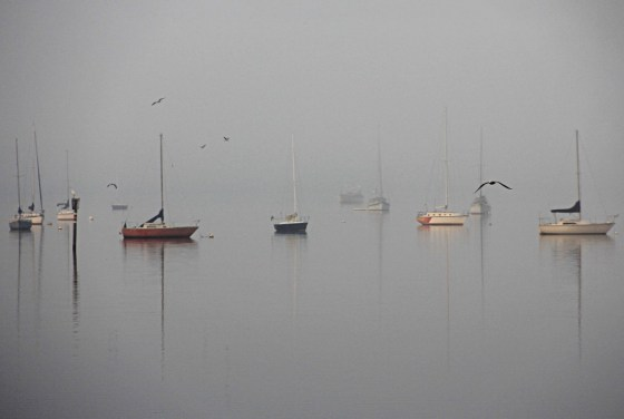"Sid Earley ""Boats in the Mist"""