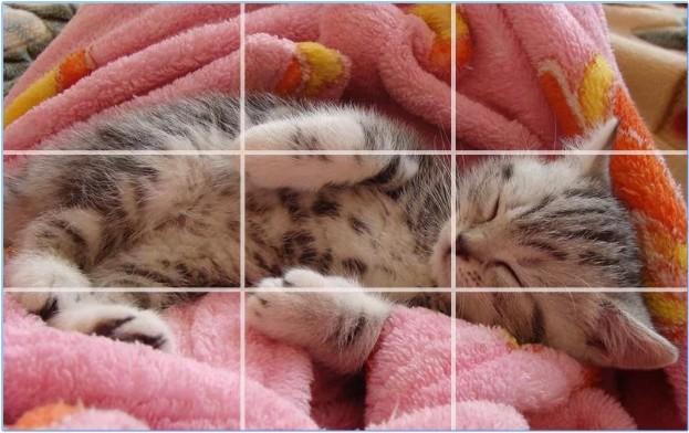 kucing - Puzzle