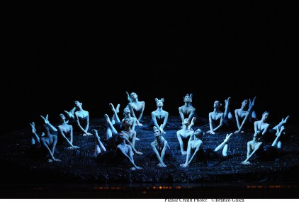 Swan Lake 2015 The Australian Ballet © Branco Gaica