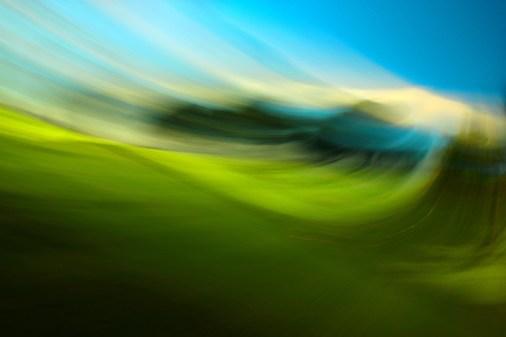 'Vista Park, Costa Mesa 1' (c) Lorraine Pasqualini 2015