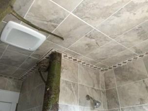Custom Stone/Tiling Ceiling
