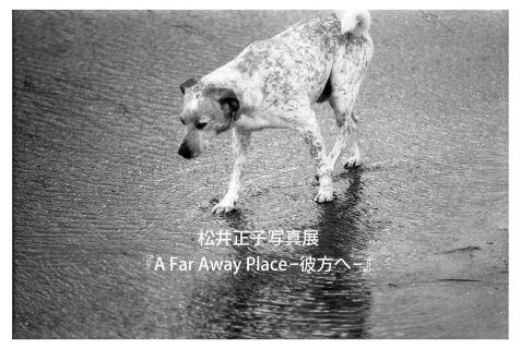 matsuimasakodm1_gallerynabesan