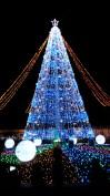 Itano Illumination (23 Desember 2016) w/ Risa chan, Wendi san, Guresu san, Amo san & Moriguchi san (1)