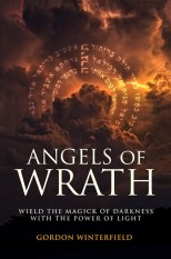 The Angels of Wrath by Gordon Winterfield