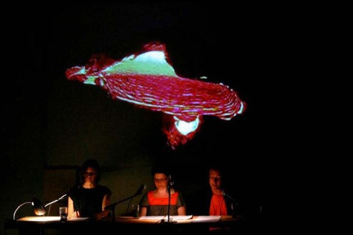 Hand Held Lava performative Lecture. Triple Canopy, Brooklyn 2010