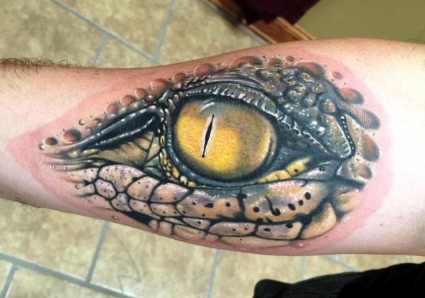 Alligator Eye Matthew Davidson Tattoonow