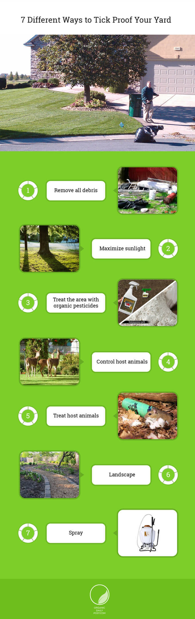 7 Different Ways to Tick Proof Your Yard