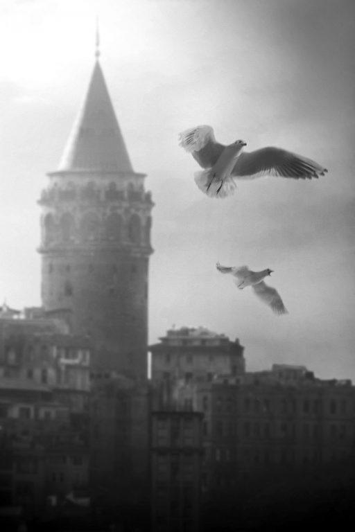 Erdal Kınacı-161