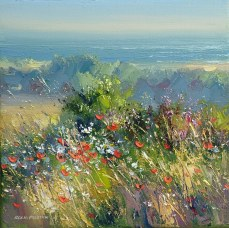 N312A Poppies, North Norfolk Coast 8x8