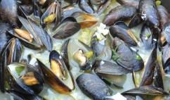 Belgium mussels in pot close
