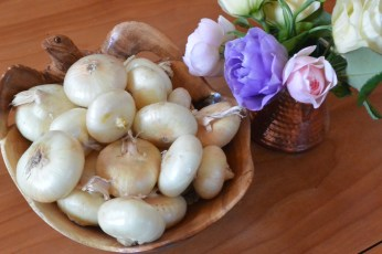 onions with flowers