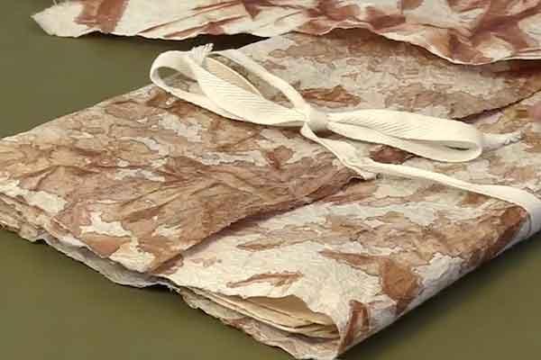 Kakishibu Persimmon Tannin Shibori Paper Fabric Analisa Hedstrom 04