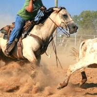 calf roping - Version 2