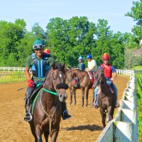 From Yearling to Racehorse: In Two Not-So-Easy Steps