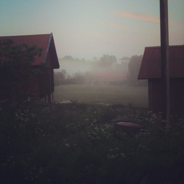IMG_3913