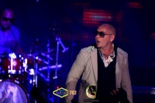 AGP-Pitbull---012