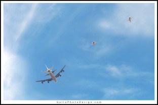 Endevour-Shuttle-Goodbye-04--72