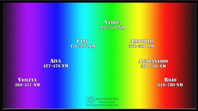 Espectro Visible del Ojo Humano (Luz)