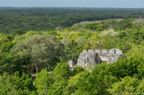 More than 80 Mayan cities could be found on the Campeche jungle, on the south of the Yucatan peninsula.