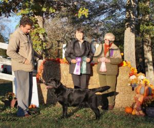 GALRC 11-14-15 RWB, Best Puppy, 1st 9-12 sweeps, 1st 9-12 class – Bellweather Sweetest Taboo (2)