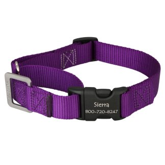 Collars, Leashes and Tags