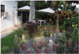 Bungalow 1 Garden El Caracol