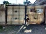 Lote Corale Gate