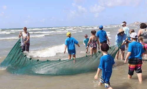 2019 TCAAA Beach Exploration for Youth-5