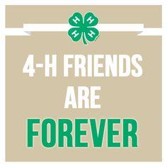 4-h-friends
