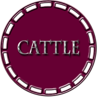 Cattle Classes